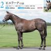 2019年 キャロットクラブ募集馬 新規検討② 関東牡馬
