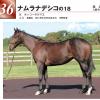 2019年 ウイン募集馬 新規検討①
