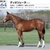 2020年 社台RH/サンデーR募集馬 新規検討①サンデーR  関西 牡馬