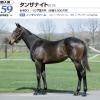 2020年 社台RH/サンデーR募集馬 新規検討④サンデーR 関西 牝馬