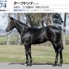2021年 社台RH/サンデーR募集馬 新規検討⑤社台TC 関西牡馬