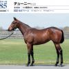 2021年 社台RH/サンデーR募集馬 新規検討⑥社台TC 関西牝馬