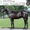 2021年 キャロットクラブ募集馬 新規検討④ 関西牡馬